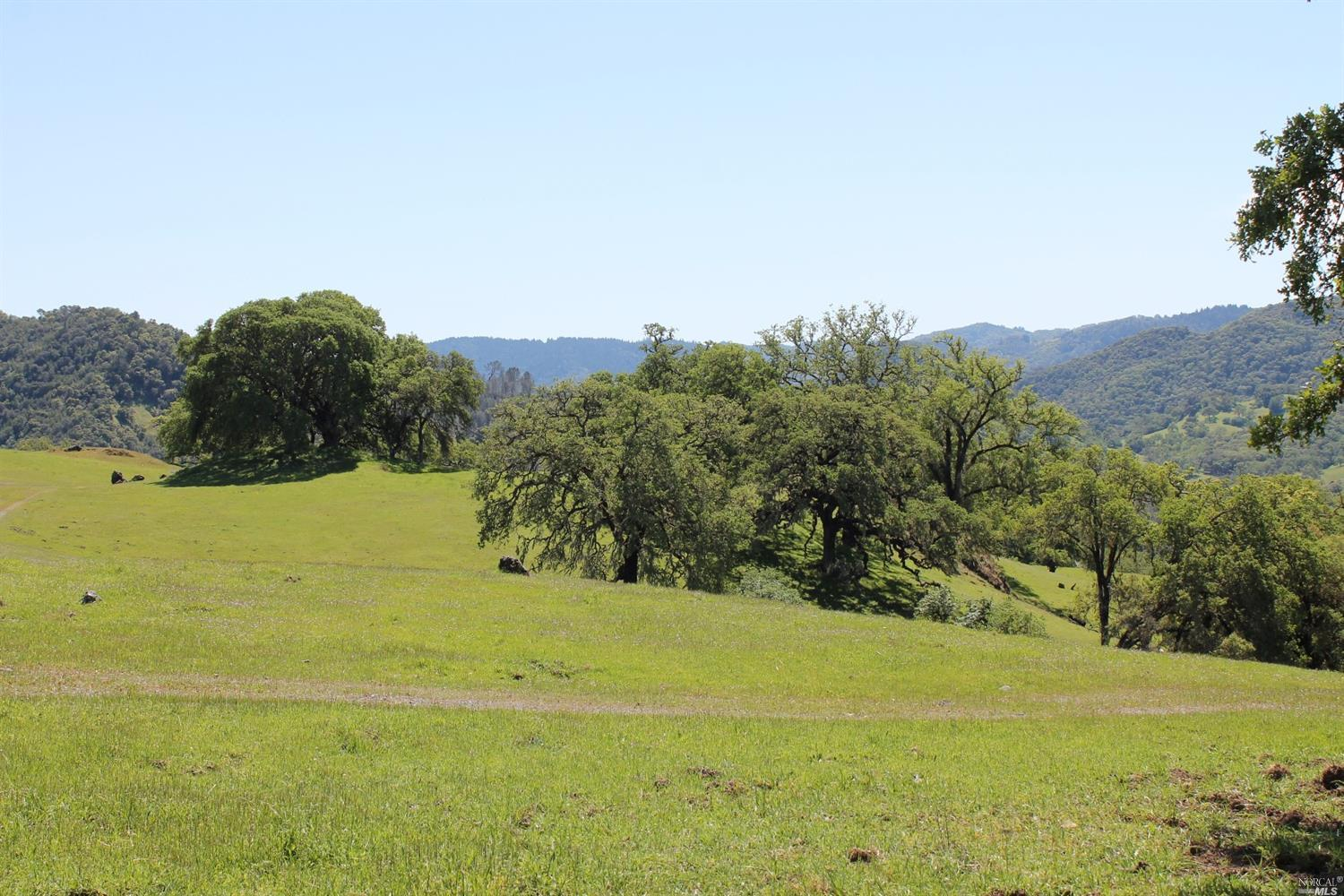Mountain Oak Ranch Hopland- 725 Acres with multiple parcels and structures   $3,500,000 .            Represented Buyer