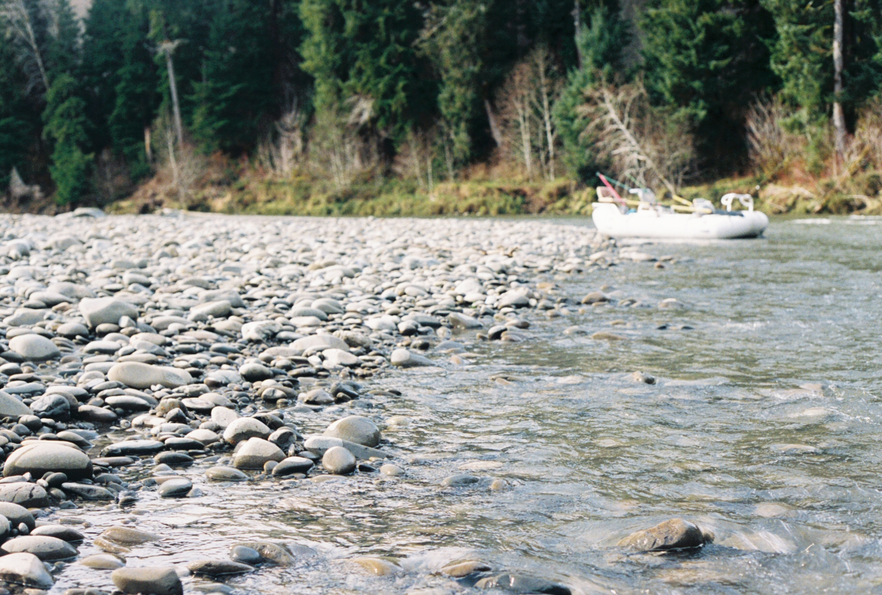 Bogachiel River, Washington