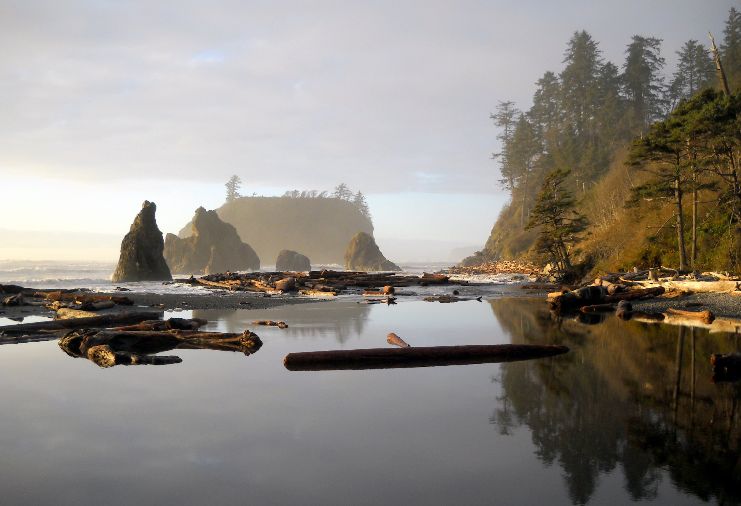 Olympic Peninsula Road Trip Driving Itinerary