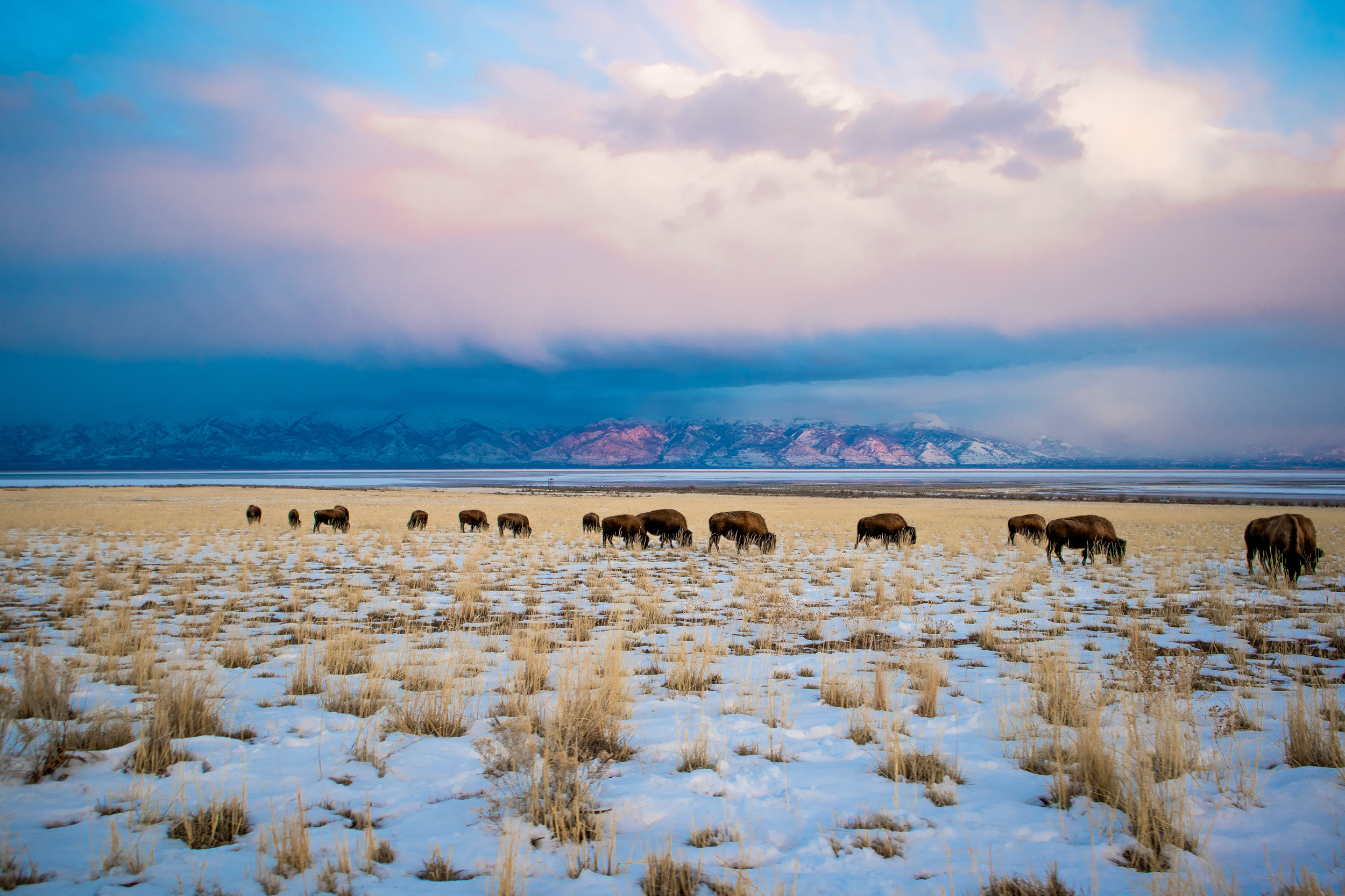 ANTELOPE ISLAND STATE PARK -