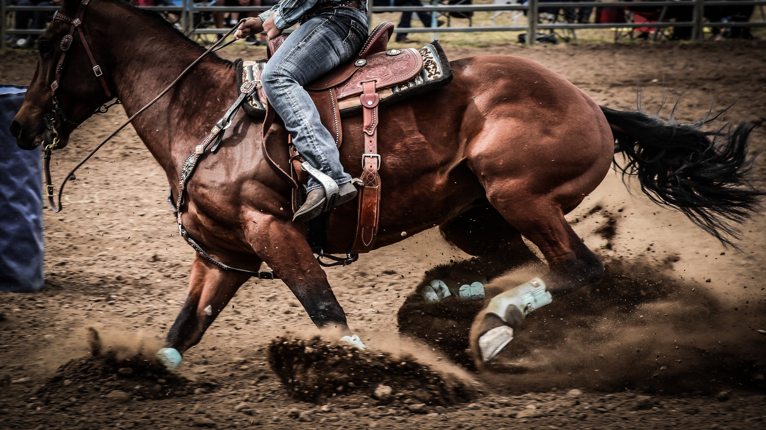 Experience a rodeo