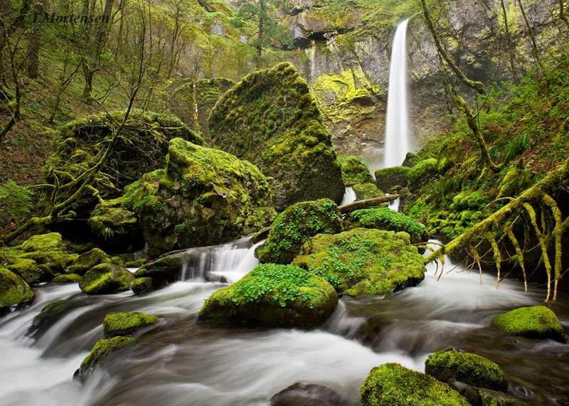 Best things to see Columbia River Gorge