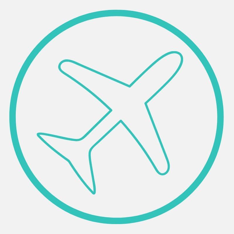 airplane icon.jpg