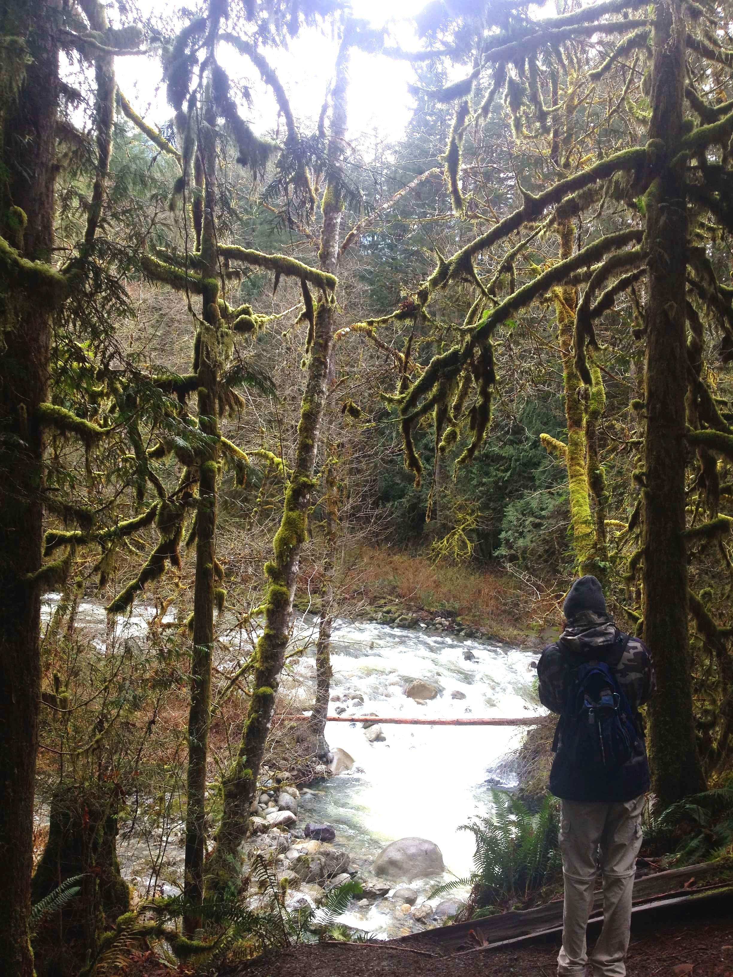 Hiking Wallace Falls