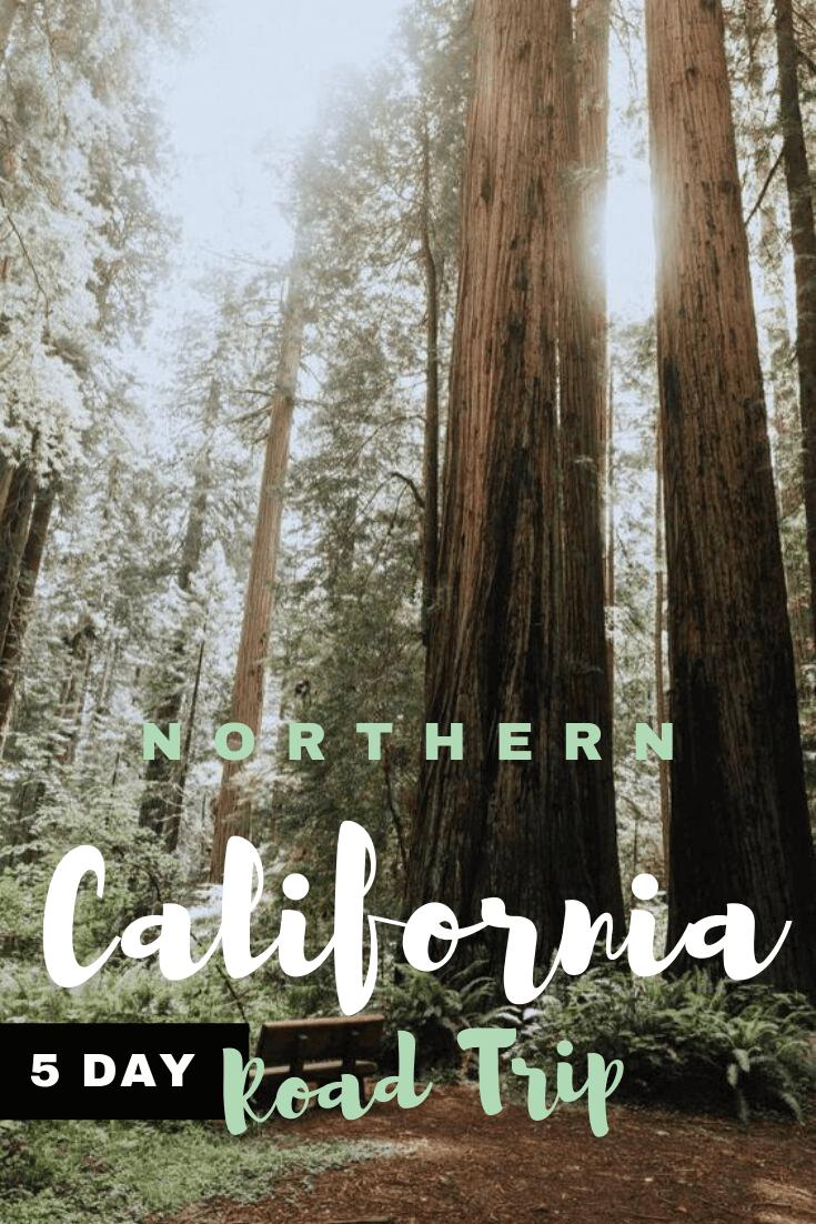 Northern California Coast Road Trip & Driving Itinerary