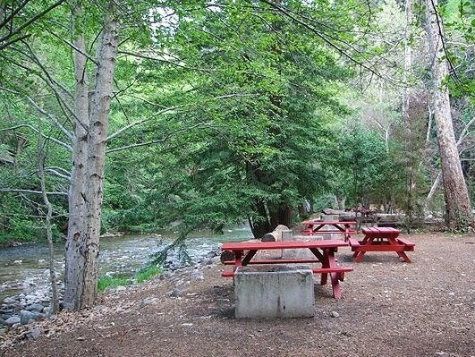 Best Campgrounds in Big Sur