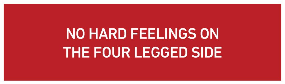 no-hard-feelings.png