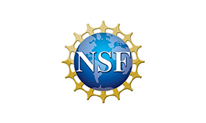 img-partner-nsf.png
