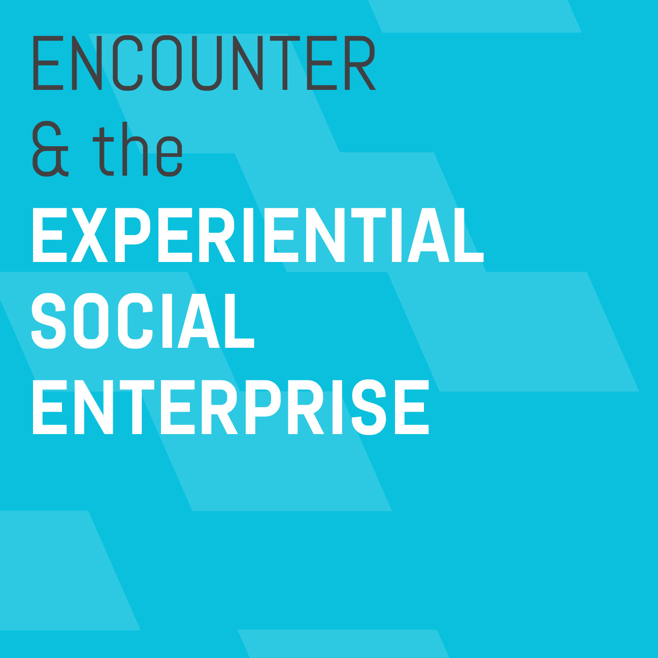 Encounter-&-the-Experiential-Social-Enterprise.jpg