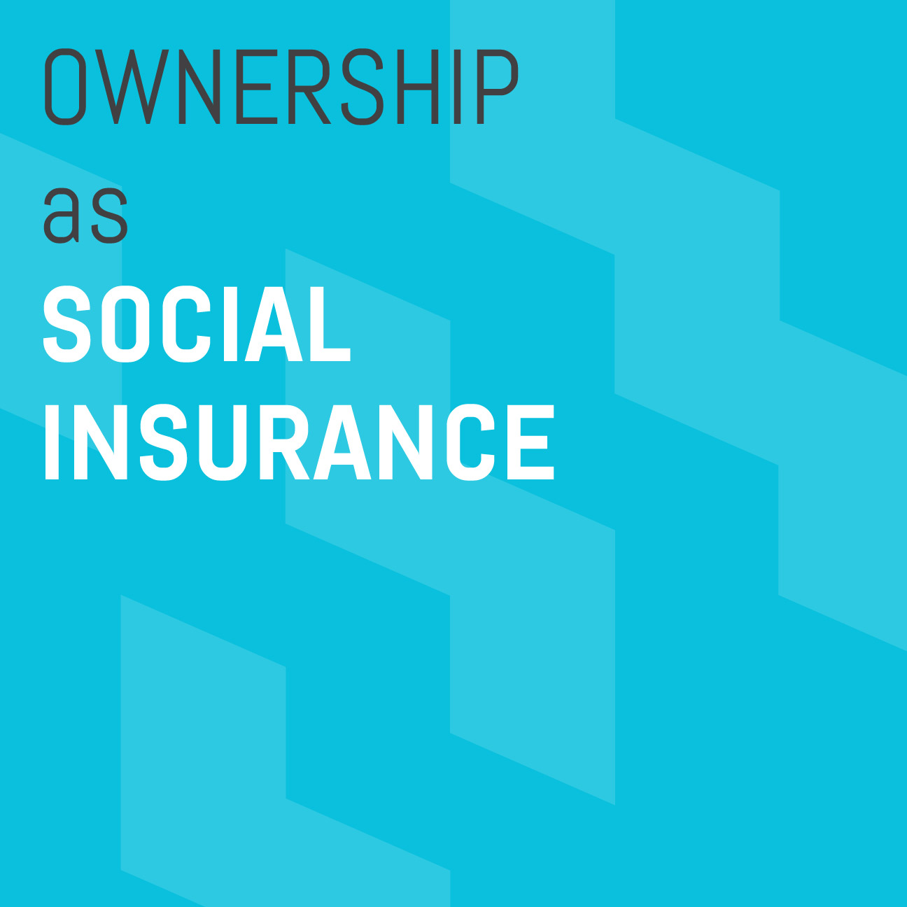 Ownership-as-Social-Insurance.jpg
