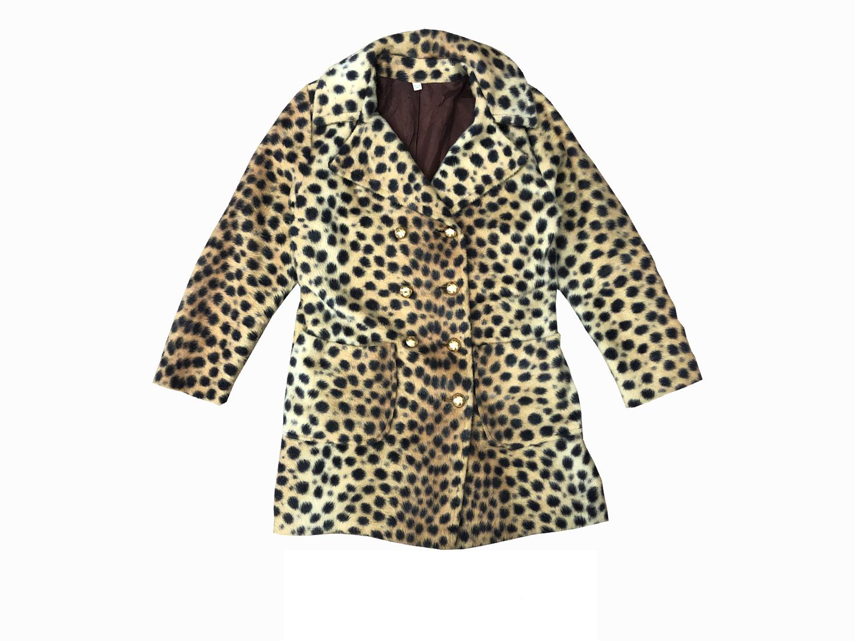 cheetahprintcoatcover.jpg