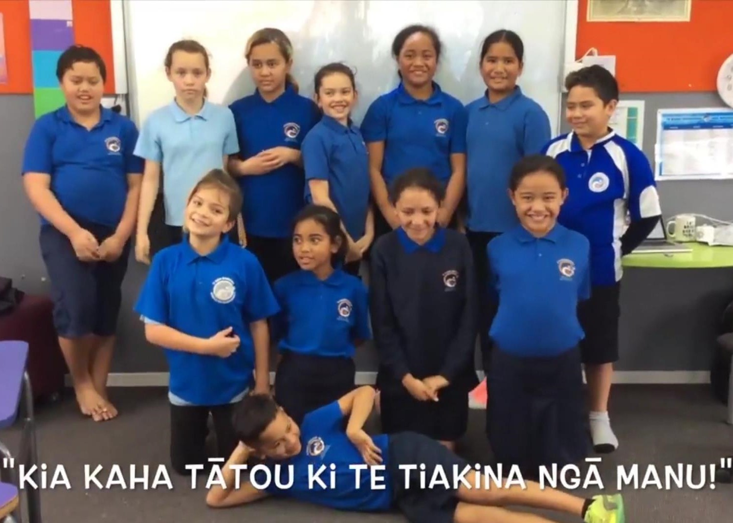 """Years 1-4 - 60 minute lesson-plan focus:Learn about Aotearoa's unique native birds and the threats they face via virtual reality!Extra resources:1) """"Squawk's Journey"""" - virtual reality experience 2) Make a nature scrapbook3) Bird watching!4) Zealandia trading card game5) Inquiry based learningCall to action: Tell your whānau about what you've learnt!"""