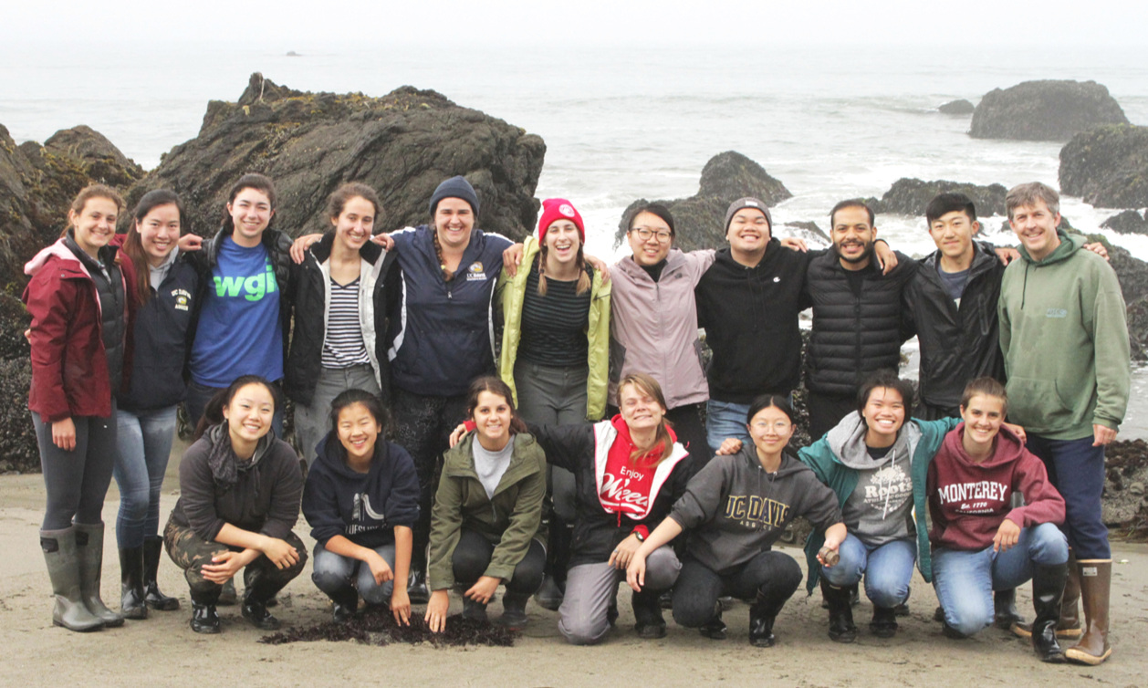 TEACHING AND MENTORING - We are dedicated to training the next generation of marine scientists through hands-on undergraduate courses and mentored research experiences.