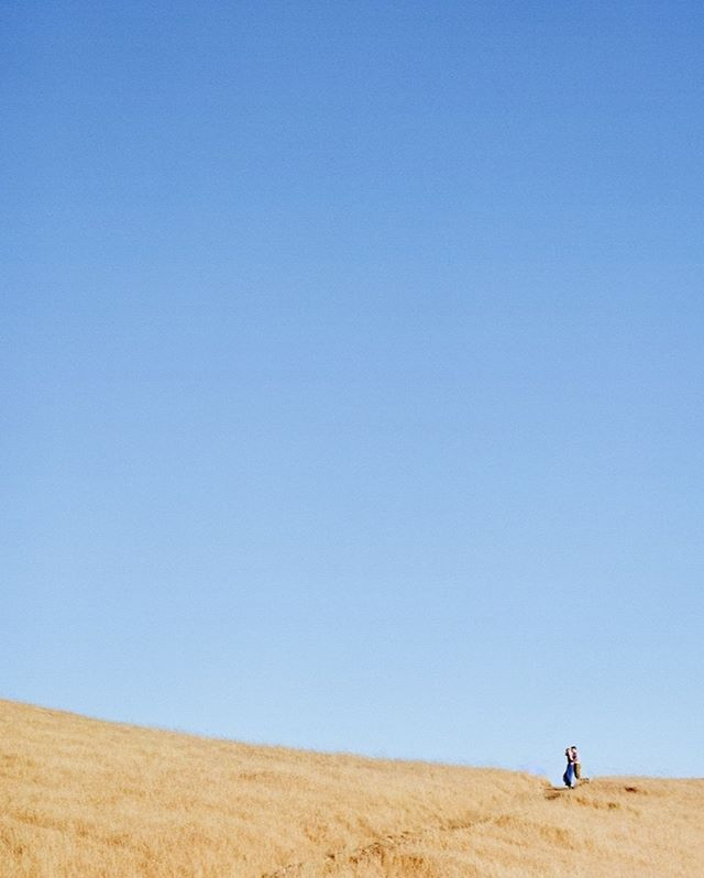 Blue and yellow. Cal bears. California coast. Summer. ⠀⠀⠀⠀⠀⠀⠀⠀⠀ ⠀⠀⠀⠀⠀⠀⠀⠀⠀ #californiaphotographer #editorial #photographinglife #robinjolin #lifestylephotographer #mttam #marin #openspace #blueyellow #calbears #calcolors #westcoast #californiacoast