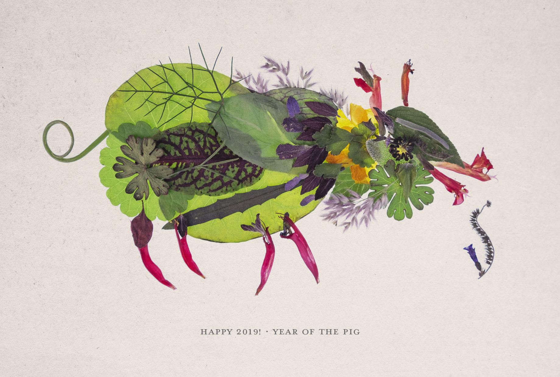 2019-Pig-Postcard_Print.jpg