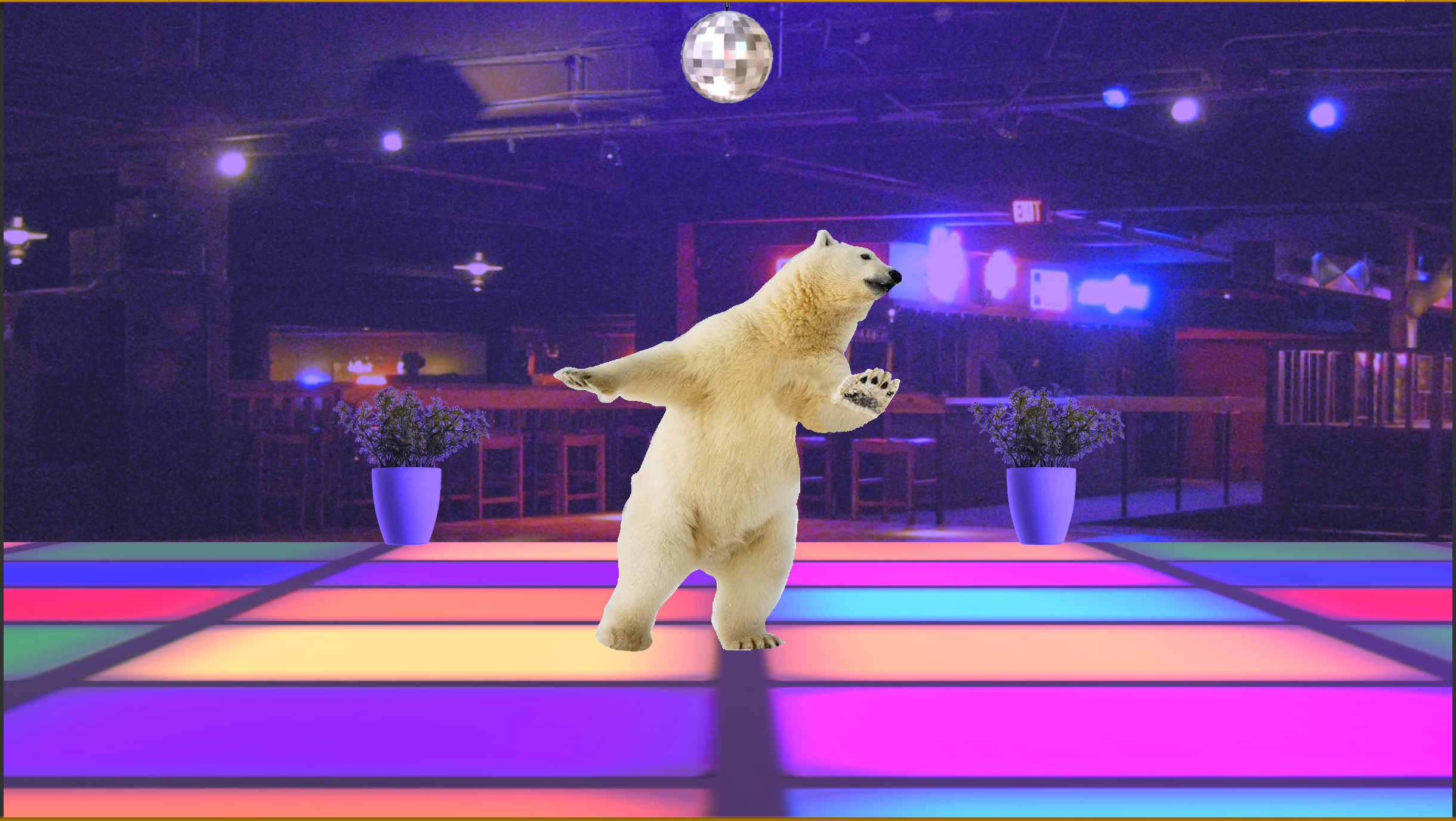 discobear1.png