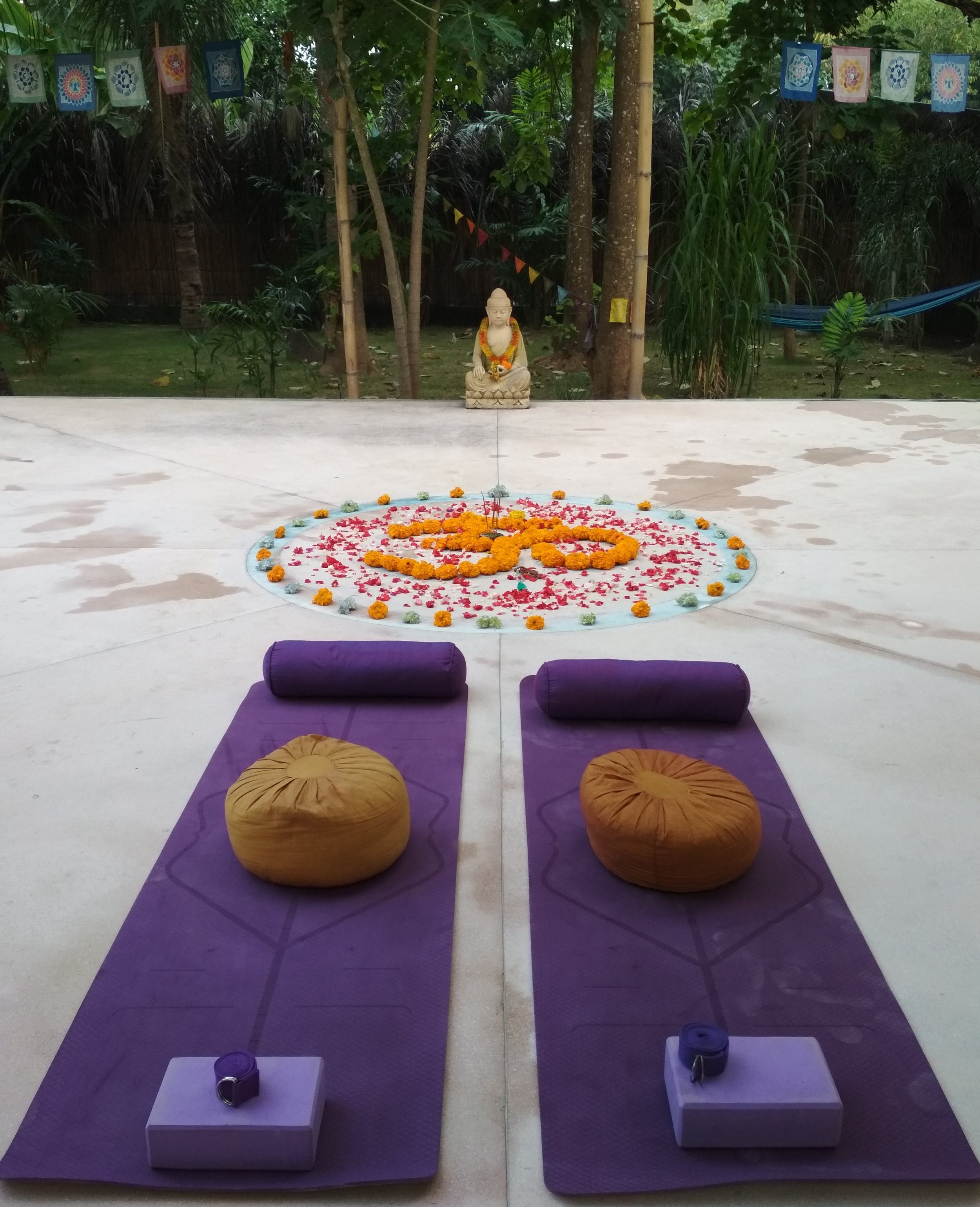 Possible contents are: - Asana practice, alignment, Yoga Therapy,Establishment of a yogic daily routine and integration of your yoga practice into everyday lifeyogic dietand many more.I offer private lessons personally and online. For questions and appointments write me an email or whatsapp message. My contact details can be found here