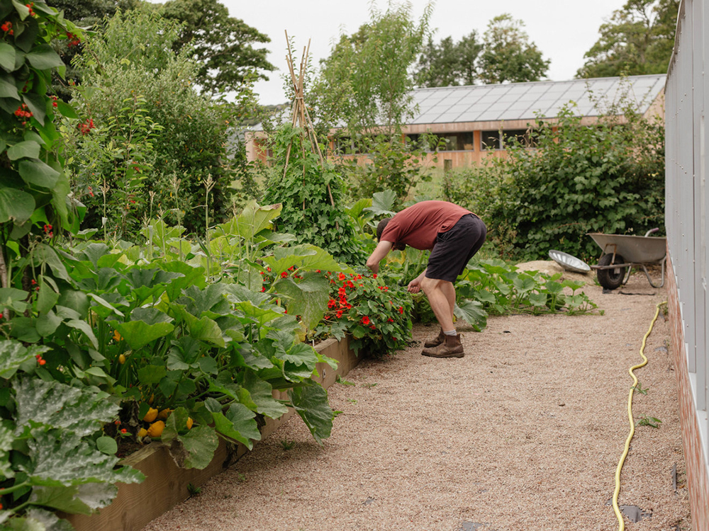 Fields-in-Fields_ARGAL-HOME-FARM-Garden_1.jpg