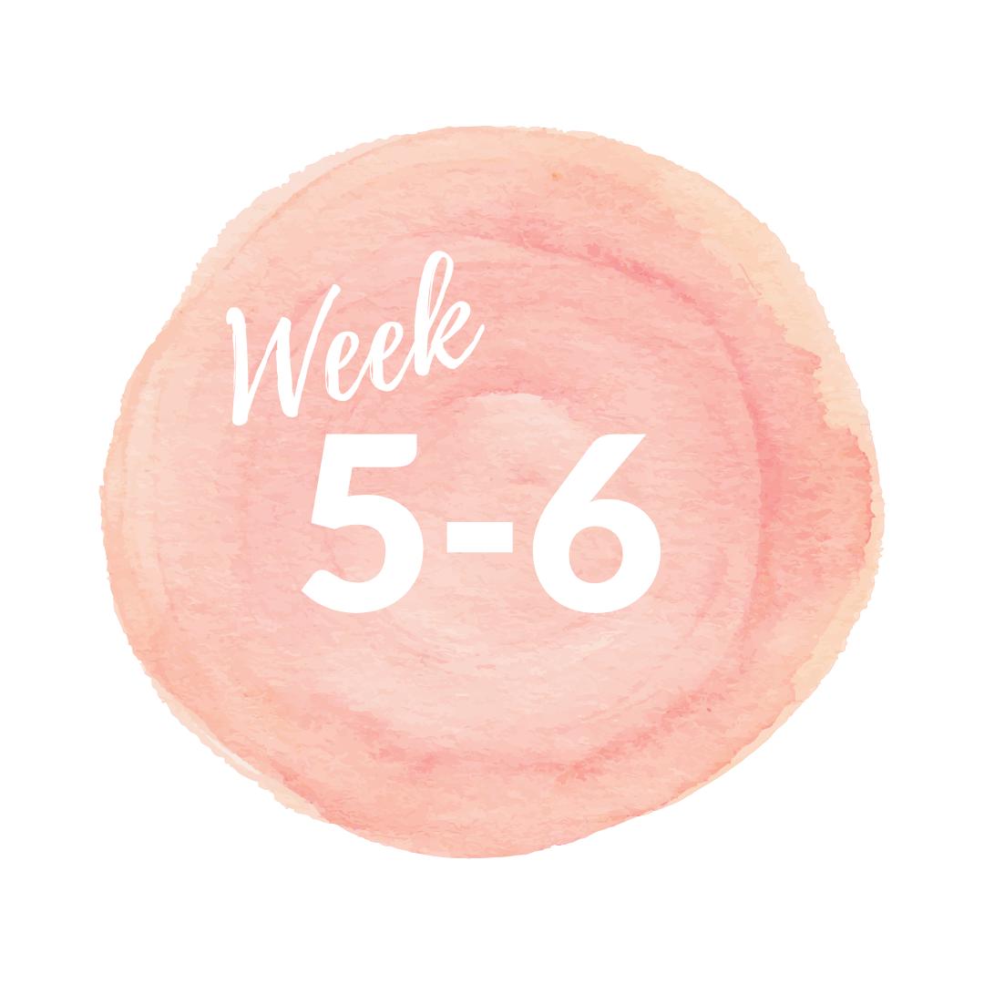 Week.png
