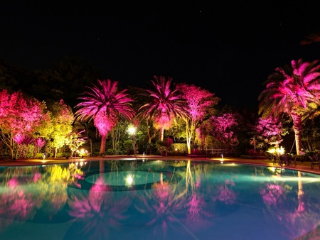 Night-POOL-1.jpg