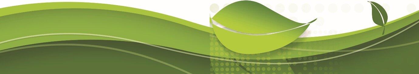 green gazette bottom.jpg