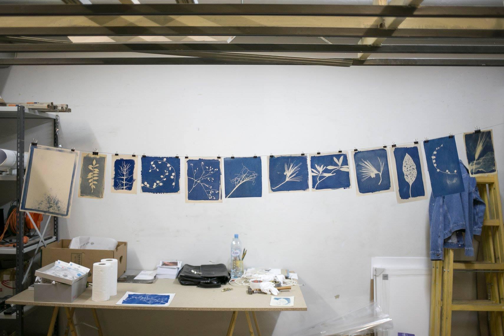 Cyanotype workshop - lamut-18.jpg