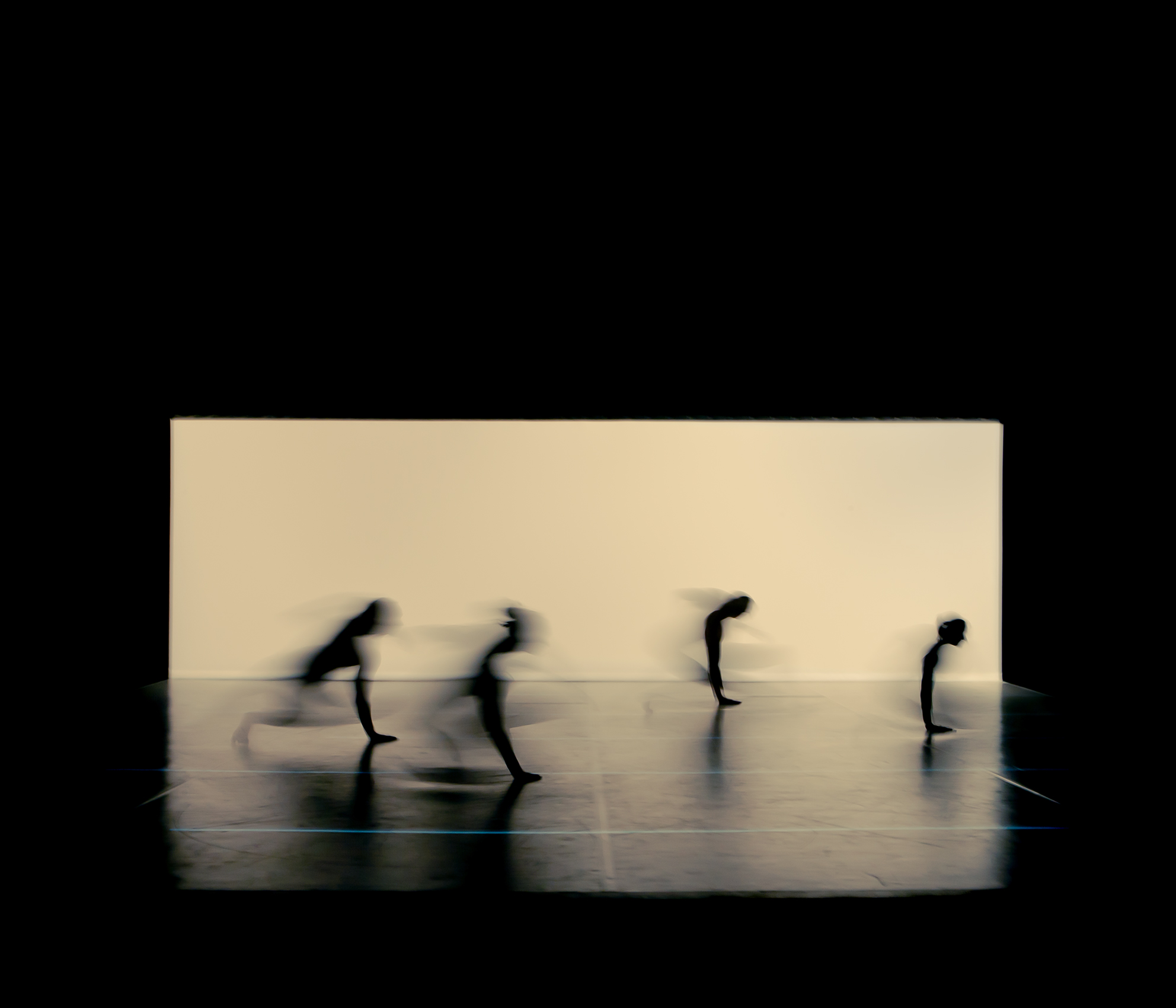 """Evolution"" | Inkjet print | 60 x 70  cm | Edition of 5 | 2012"