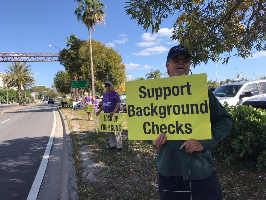 Rally for Common Sense Gun Laws