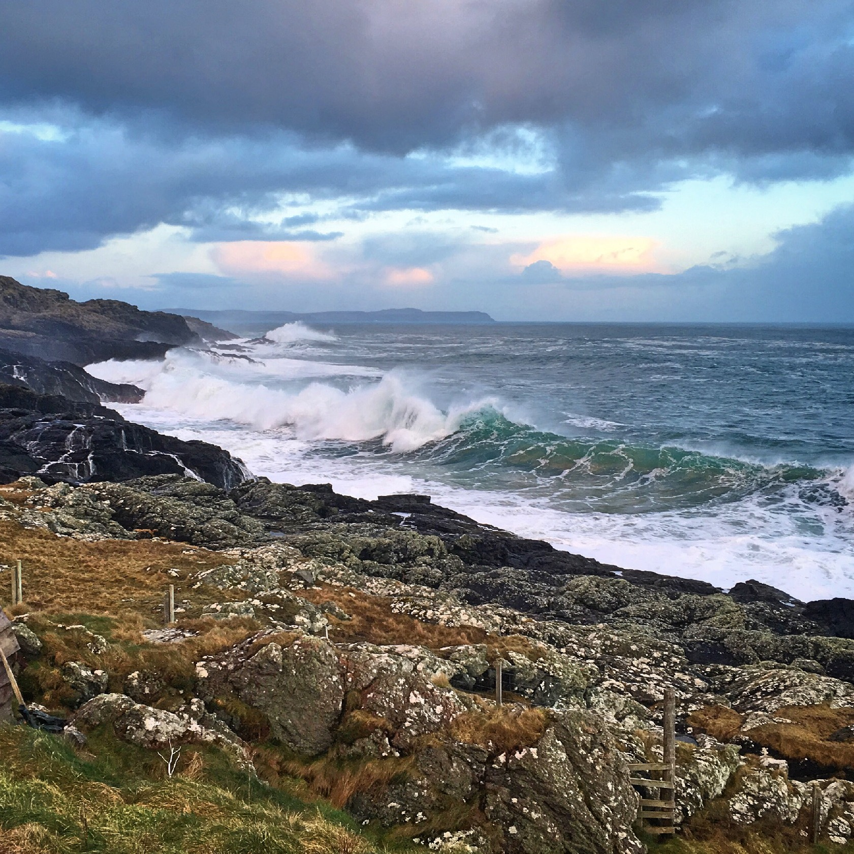 The west coast of Scotland is incredibly biodiverse… but why? - Within the Hebrides, warm oceanic currents from the south and west, and offshoots from the Gulf Stream, mix with cool coastal currents. This, in combination with the complex bathymetry (underwater mountains and valleys) encourages mixing, forcing cold nutrient-rich waters up into the sunlit zone, where photosynthesis can occur, creating areas of high productivity. The plankton blooms off the west coast of Scotland are so extensive they can be seen from space!The complex coastline also means there are a variety of habitats, from sheltered areas in the long sea lochs to fast tidal currents between islands, coastal and shelf waters and the open ocean of the Atlantic. Deep water close to the coast, such as in the sound of Raasay, brings offshore and deep-diving species close to the coast too.