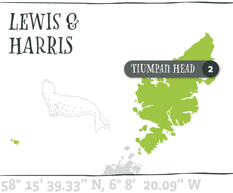 Map - Tiumpan Head@2x.png