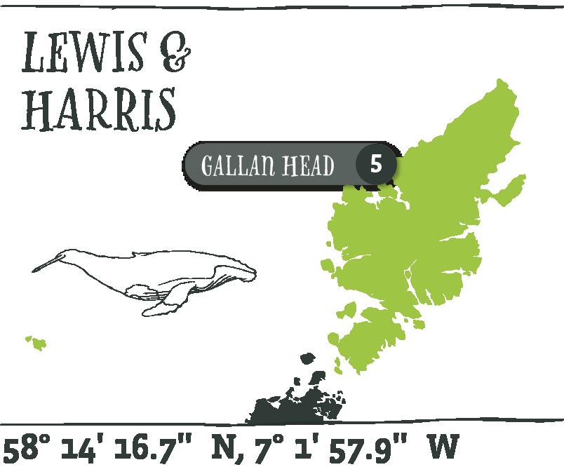 Map - Gallan Head@2x.png