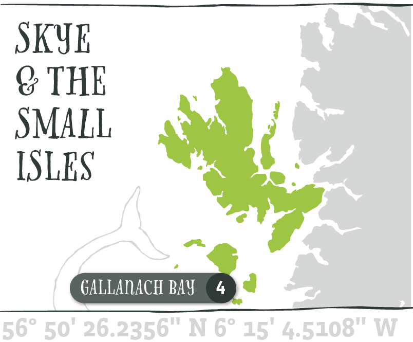 Map - Gallanch Bay@2x.png