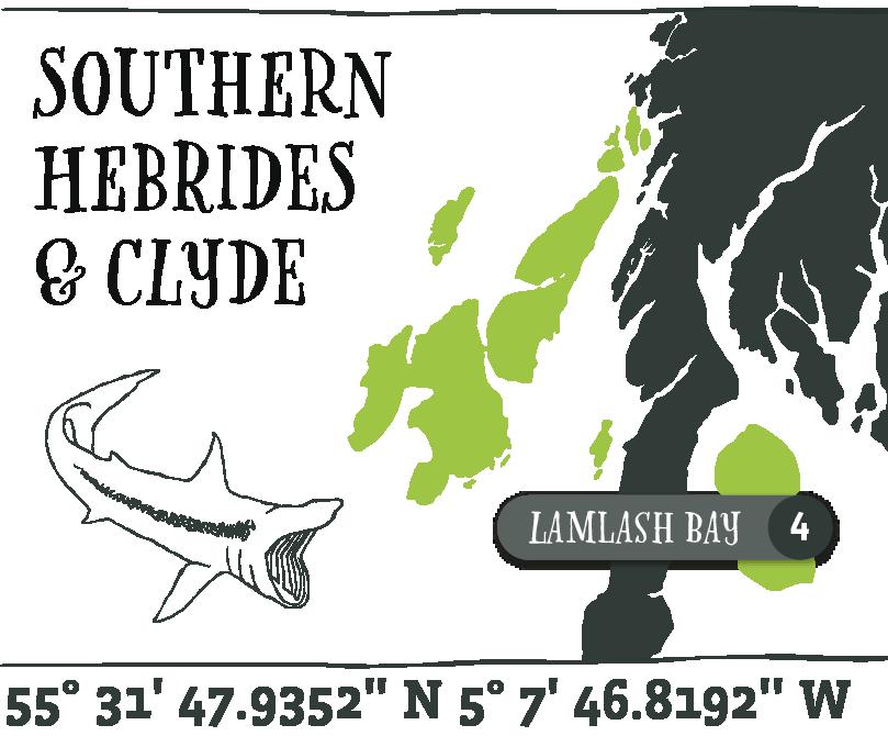 Map - Lamlash Bay@2x.png