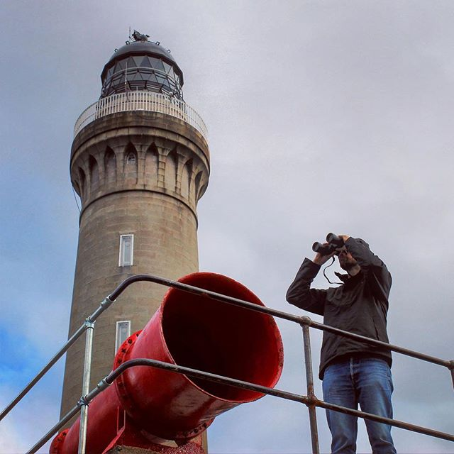 Do you fancy spending the summer living in a lighthouse, watching out for whales? Check out the vacancies page at hwdt.org for this amazing opportunity; part of the Hebridean Whale Trail - https://hwdt.org/vacancies/ardnamurchan-lighthouse-volunteer - - - - #wildlifewatching #whalewatching #hebrideanwhaletrail #hwdt #wildscotland #visitscotland #lighthouse_world #lighthouselovers #bbcscotland #dreamjob #ardnamurchanlighthouse #ardnamurchan #northernlighthouseboard #guardiantravel #lonelyplanet #nlb_uk #whaletrail #scotlandhighlands #lovescotland #stvnews #theoneshow #bbcspringwatch #