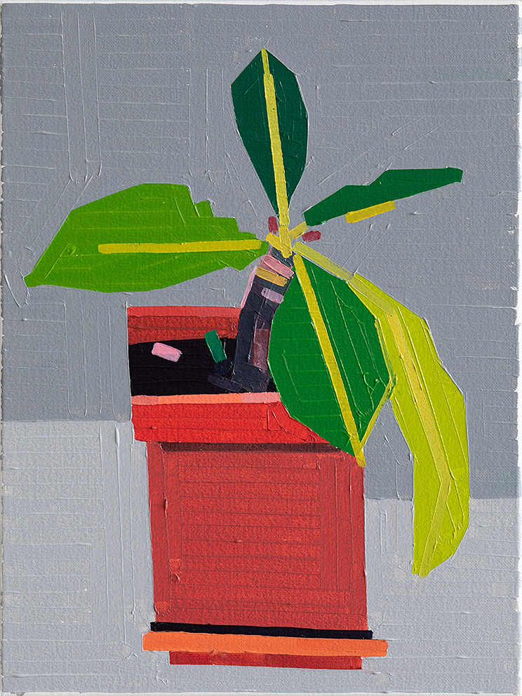 Plant with a Few Leaves, 2019