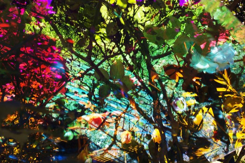 Untitled #45, 2014