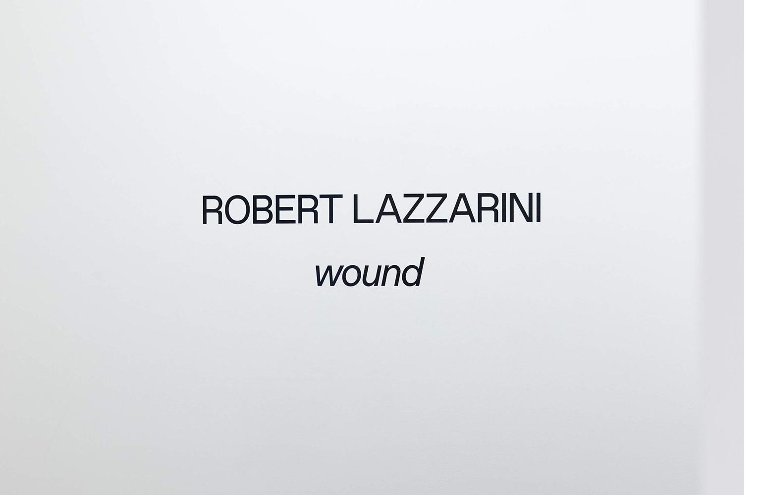 Lazzarini_wound_Install_18.jpg