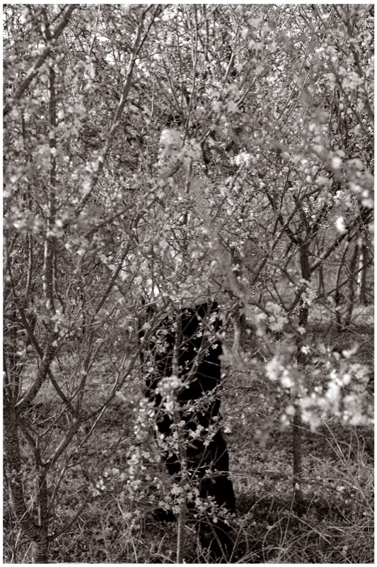 Raymond Grubb, (B. American, 1952)