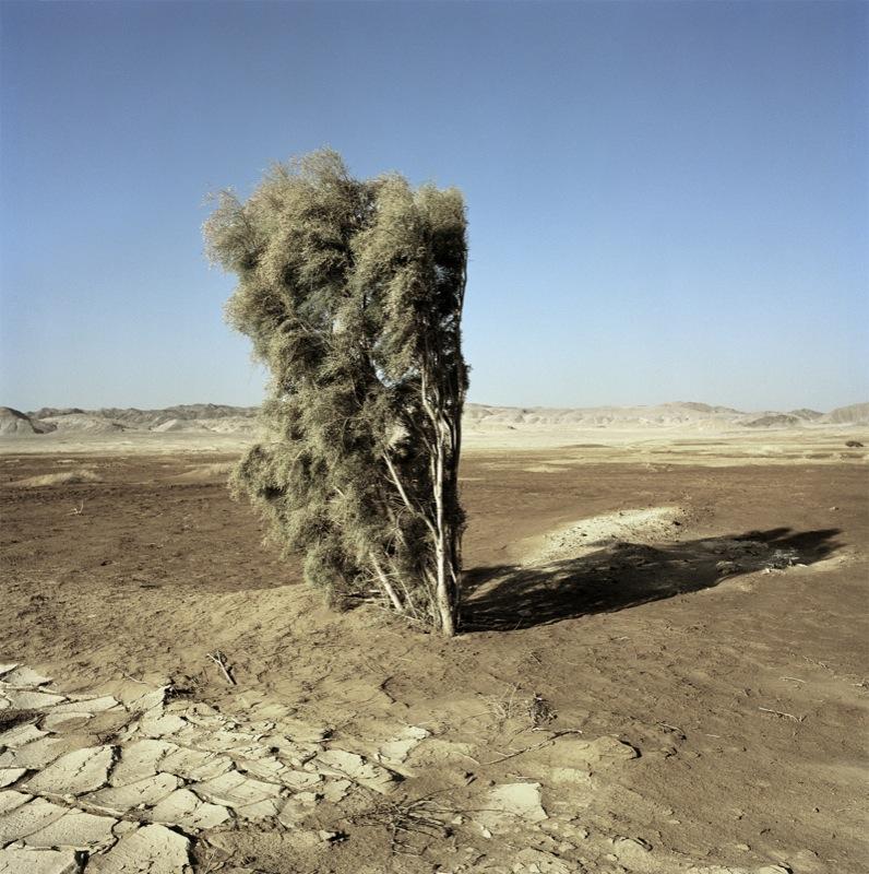 Giza Desert, Egypt, 2004