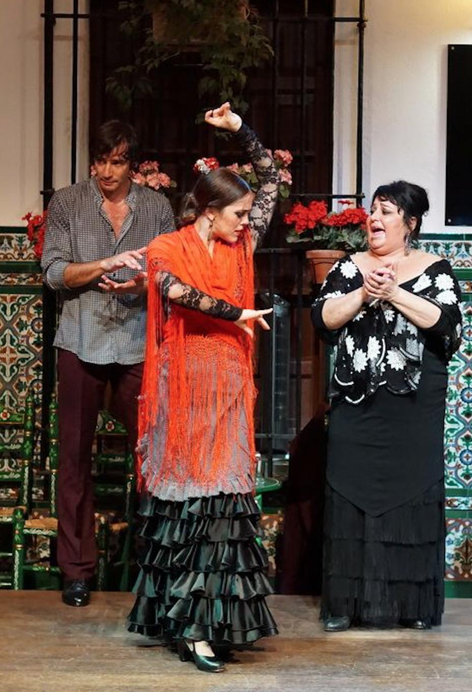 A Flamenco dancer in a small Sevillian bar - she was mesmerizing!