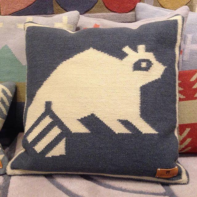 This guy! The new trash panda cushion by @studioeeuwes So Toronto. #raccoon #toronto #urbanwildlife #canadiandesigner