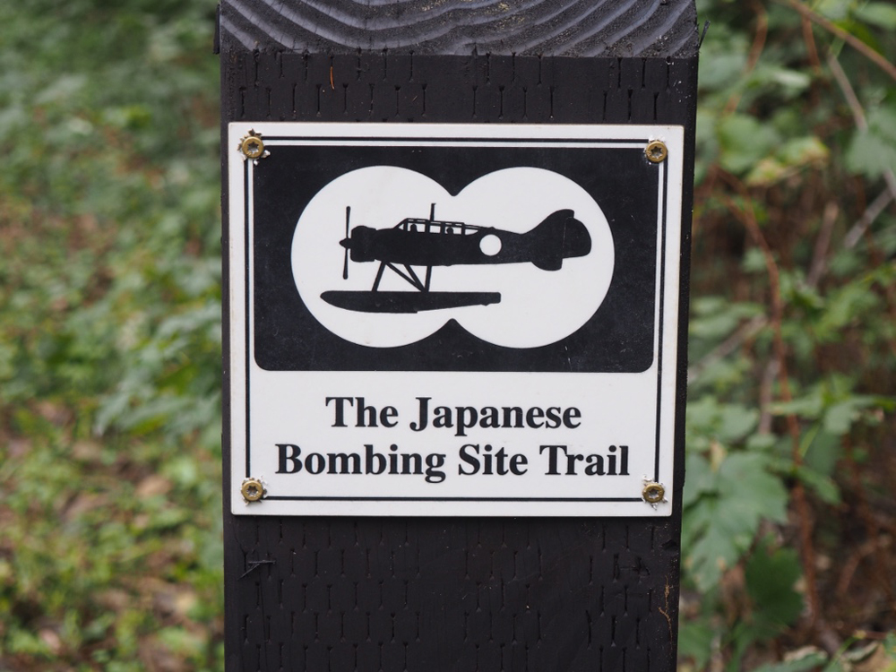 Copy of Japanese Bombing Site Trail #1118