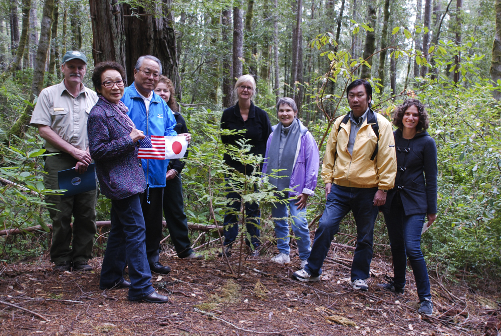 Mr. Fujita's family & friends visit his redwood Peace Tree