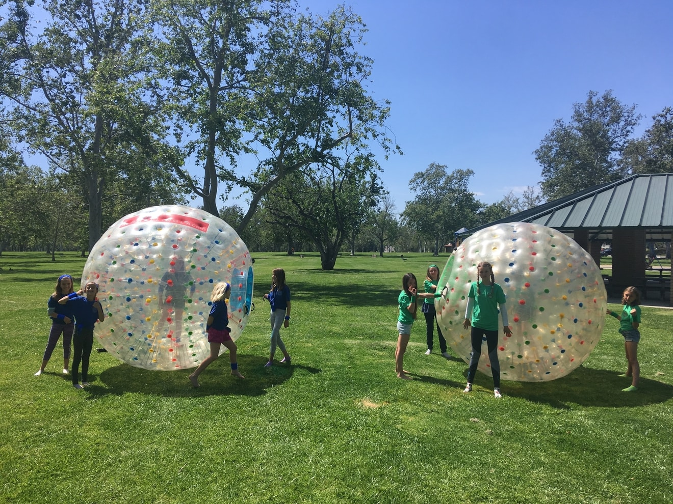 Group Photo with Inflatable Hamster Balls