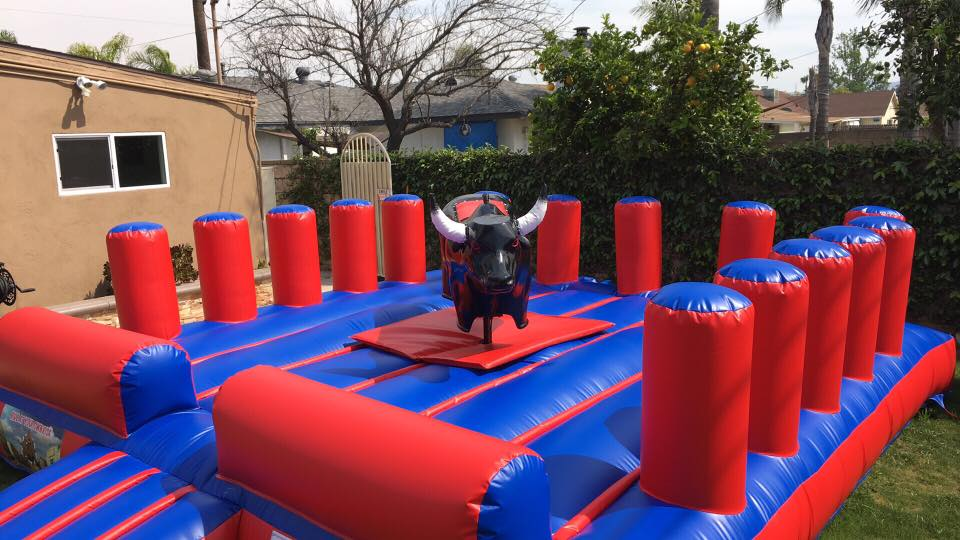 Mechanical Bull for Adults