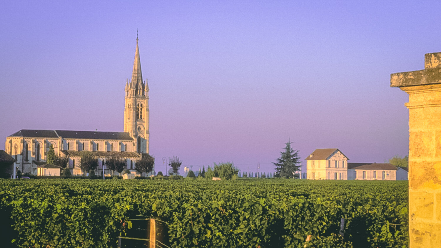 Church and vineyards in Pomerol.