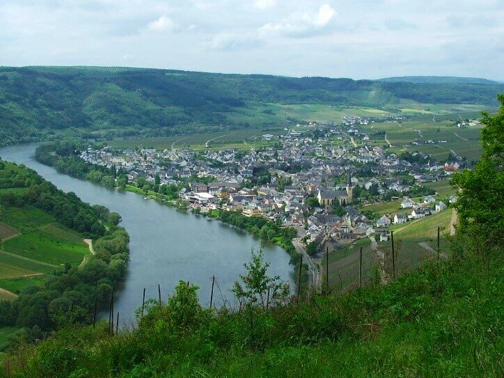 Mosel Riesling: the finest white wines are also exceptional for investment