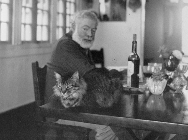 Ernest Hemingway, one of his cats and a bottle of his much loved beverage: wine (credit: Hemingway Collection, JFK Library)