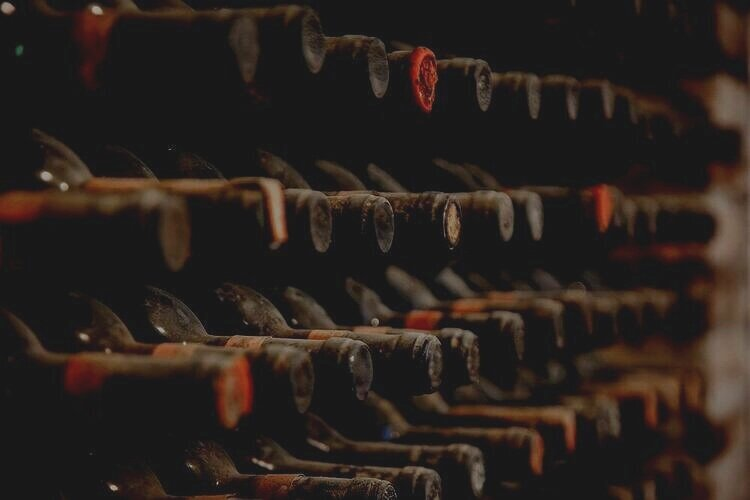 Bottles in cellar: indexes have been demonstrating steadiness of fine wine prices, even with the pandemic
