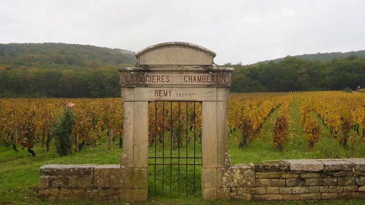 julien burgundy grand crus 3.jpg